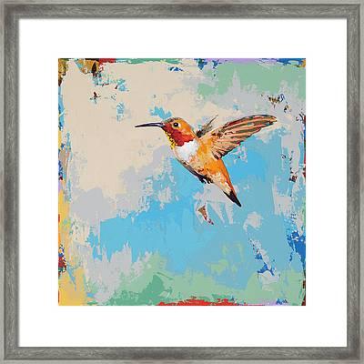 Hummingbird #24 Framed Print