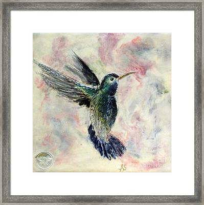 Hummingbird Flight Framed Print