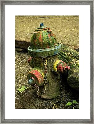 Hydrant Framed Print