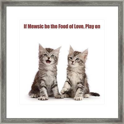 Framed Print featuring the photograph If Mewsic Be The Food Of Love, Play On by Warren Photographic