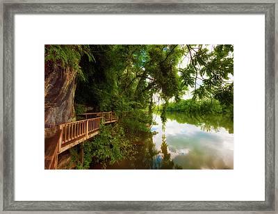 Ijam Nature Park Boardwalk Along The Tennessee River Framed Print