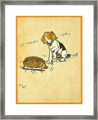 Puppy And Hedgehog, Illustration Of Framed Print