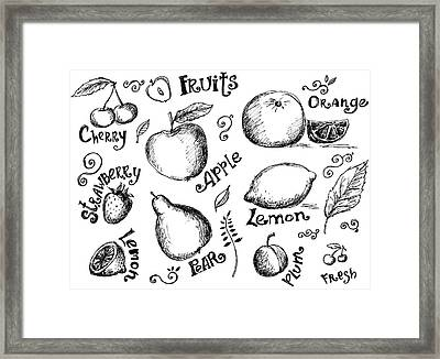 Illustrations Of Various Fruits And Framed Print by Kalistratova