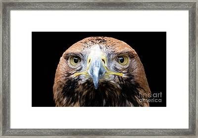 I'm Looking At You Framed Print