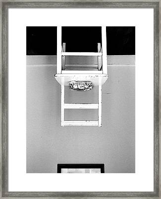 Attraction / The Chair Project Framed Print