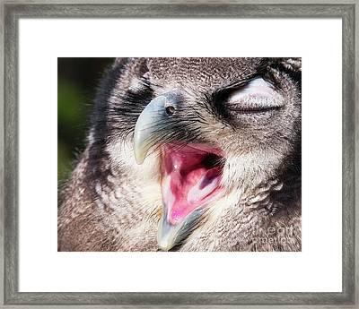 It's Monday Again Framed Print