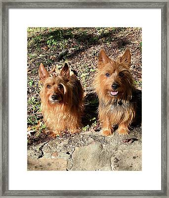 Jack And Lily 2 Framed Print