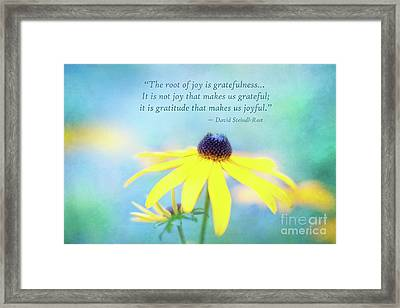 Joy And Gratefulness Framed Print