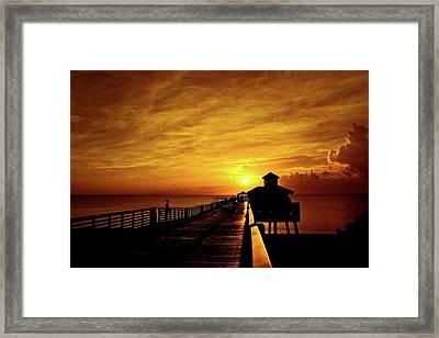 Juno Pier 4 Framed Print