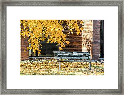 Just A Bench Framed Print