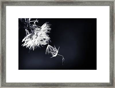 Framed Print featuring the photograph Just Breath by Michelle Wermuth