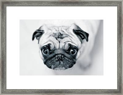 Just Enough Framed Print