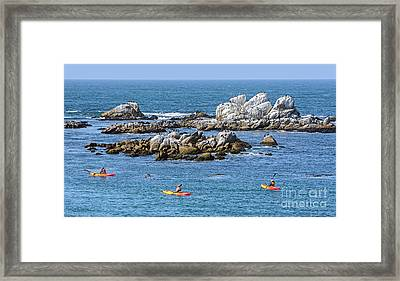 Kayakers Experience Bird Rock At Pacific Grove Framed Print
