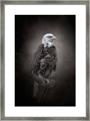 Keeping Watch Framed Print