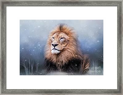 King Winter Framed Print