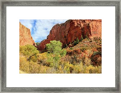 Kolob Canyon 1, Zion National Park Framed Print