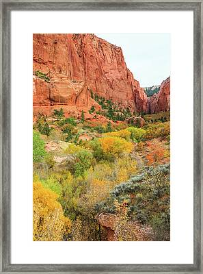 Kolob Canyon 2, Zion National Park Framed Print