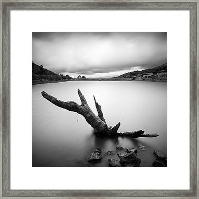 Lake Cuyamaca Stump And Clouds Framed Print by William Dunigan