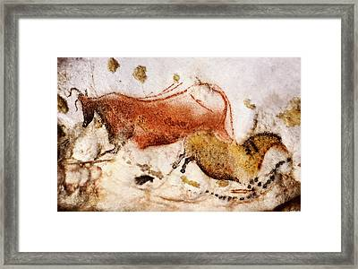 Lascaux Cow And Horse Framed Print