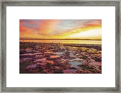 Last Light Framed Print by Fernando Margolles