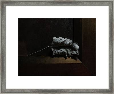 Framed Print featuring the photograph Leaf And Frame by Attila Meszlenyi