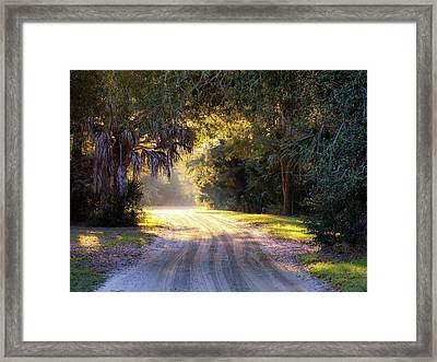 Light, Shadows And An Old Dirt Road Framed Print