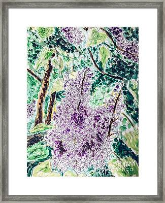 Lilac Dreams Framed Print