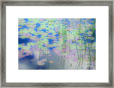 Lily Pads1 Framed Print