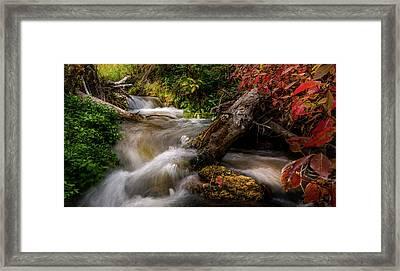 Framed Print featuring the photograph Little Deer Creek Autumn by TL Mair
