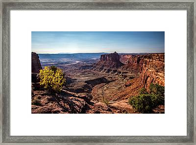 Framed Print featuring the photograph Lonely Butte by David Morefield