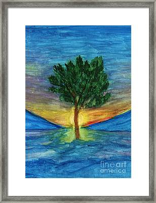 Lonely Pine Framed Print