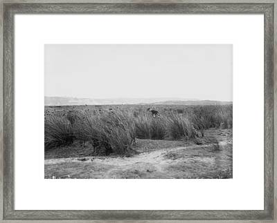 Looking For Ball Framed Print by Topical Press Agency