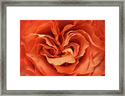 Framed Print featuring the photograph Love In Motion by Michelle Wermuth