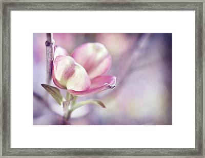 Framed Print featuring the photograph Love Simply by Michelle Wermuth