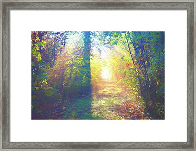Lower Sabie Framed Print