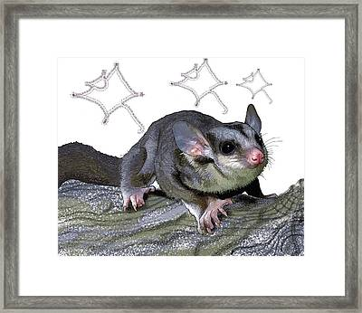 M Is For Mahogany Glider Framed Print