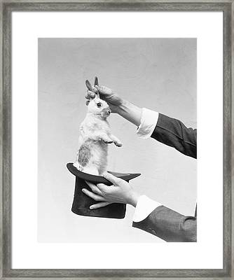 Magician Pulling Rabbit Out Of Hat Framed Print by H. Armstrong Roberts