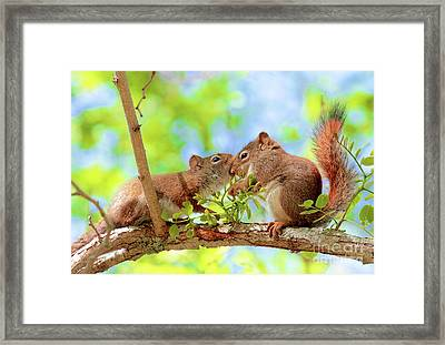 Mama Red Kissing Baby Framed Print