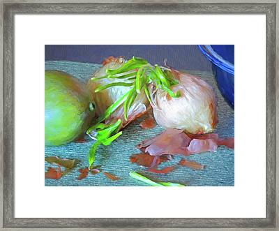 Framed Print featuring the mixed media Mango And Two Onions by Lynda Lehmann