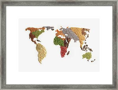 Map Of World Made Of Various Seeds Framed Print by Imagemore Co, Ltd.