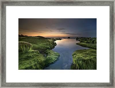 Marine Sunset Framed Print