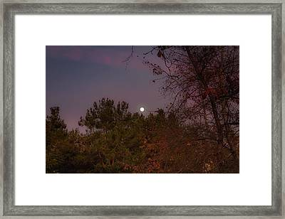 Marvelous Moonrise Framed Print