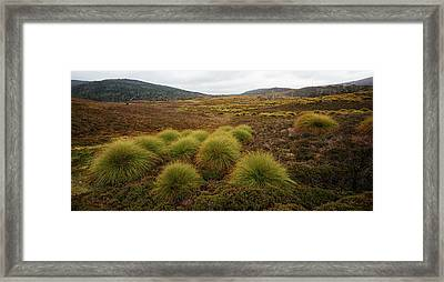 Framed Print featuring the photograph Maryland Track In Cradle Mountain. by Rob D