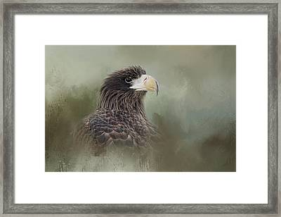 Master Of The Sea Framed Print