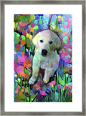 Max In The Garden Framed Print