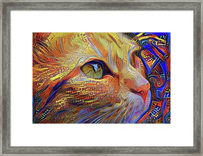 Max The Ginger Cat Framed Print