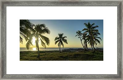Mexico Palm Tree Sunrise Framed Print