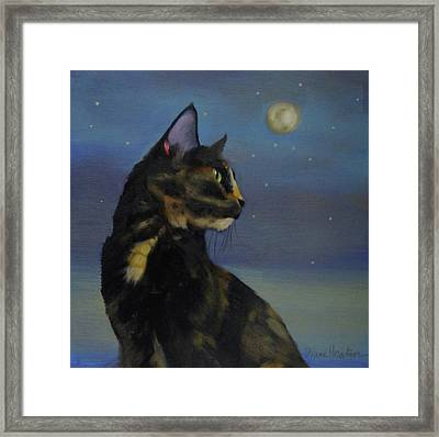 Mighty Tortie Framed Print by Diane Hoeptner