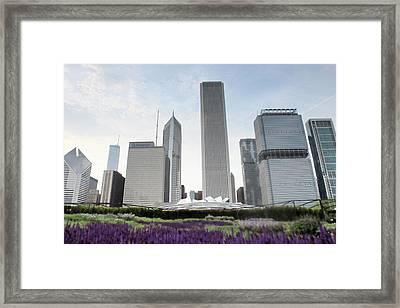 Millennium Park Framed Print