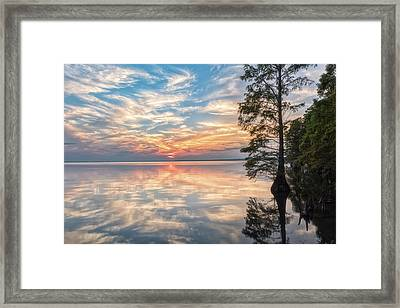 Mirrored Framed Print